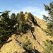 Nun über den Südgrat auf den Gipfel