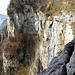 Die untere Stufe des Seerenbachfalls