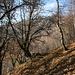 Ecco la Via dei Monti Lariani
