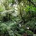 ... und, dank des Wassers, inmitten üppiger Vegetation