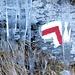 Molto più insidioso della neve è l'abbondante ghiaccio