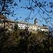 Dal fogliame sbuca Carmine superiore con la Chiesa di San Gottardo.