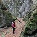 im Abstieg durch die Steinwandklamm