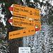 """<b>Il toponimo Alpe Fracch, dal latino tardo fragicare, """"rompere"""", significa """"zona di montagna"""". </b>"""