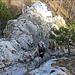 im Aufstieg zum Turmstein