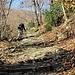 Aufstieg auf alten Steintreppen, aber in der Sonne