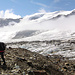 Fieschergletscher - Randzone am Beginn des Hüttenzugangs