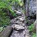Traseul urca pe ruta comuna cu Cetatile Ponorului