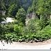 Langa Cheile Galbenei - drumul forestier Boga - Arieseni