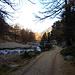 Palüd Marscha - Herbst im Engadin heißt kalt nicht nur am Morgen