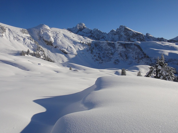 schöne Formen und Kontraste, wie sie der Schnee schafft...