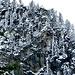 Bei meiner Anreise ist der Bergwald oberhalb der Felbertauernstraße schon gut eingeschneit.