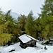 Durch Wald gehts weiter von der Stabanthütte zur Katinalm.