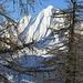 Il Madone: Ein etwas steileres Abfahrtsvergnügen...