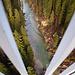 Tiefblick von der Echelsbacher Brücke