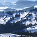 Blick vom Suruggen ins Rheintal über viele Waldhügel, ILL