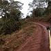 Die Hauptstraße im Ngorogoro-Nationalpark