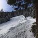 Bei wenig Schnee ist unser Aufstiegsweg nur mit einer dünnen Schicht überzogen. Da bleiben die Schneeschuhe noch am Rucksack