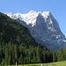 Rosenlaui, Schwarzwaldalp: das imposante Wetterhorn