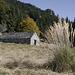 Alpe di Foppiano, hinten der Sassariente