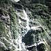 Wider einer der ungezählten Wasserfälle am Wegesrand